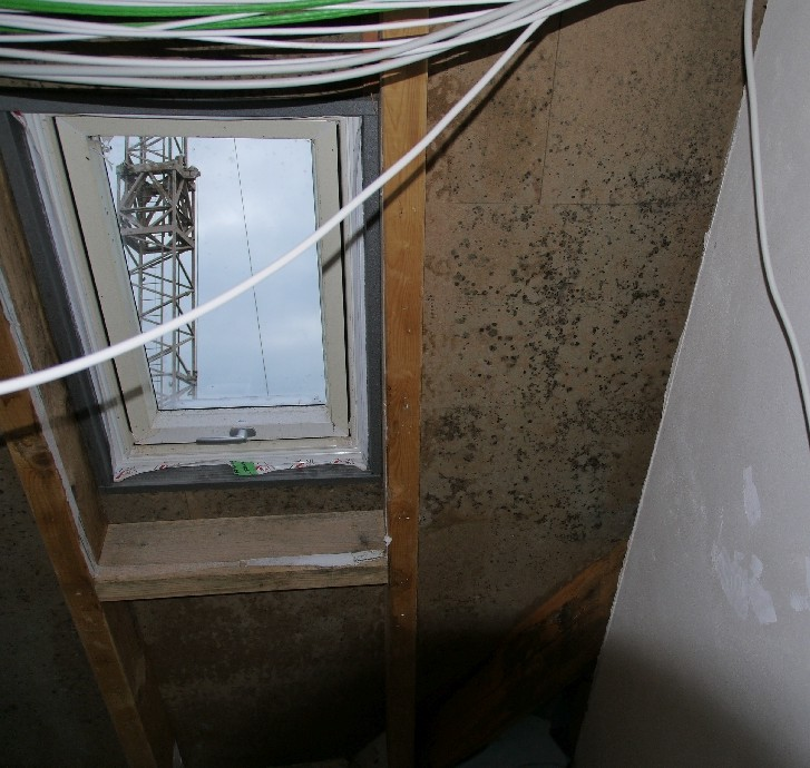 Schimmel am Dachstuhl