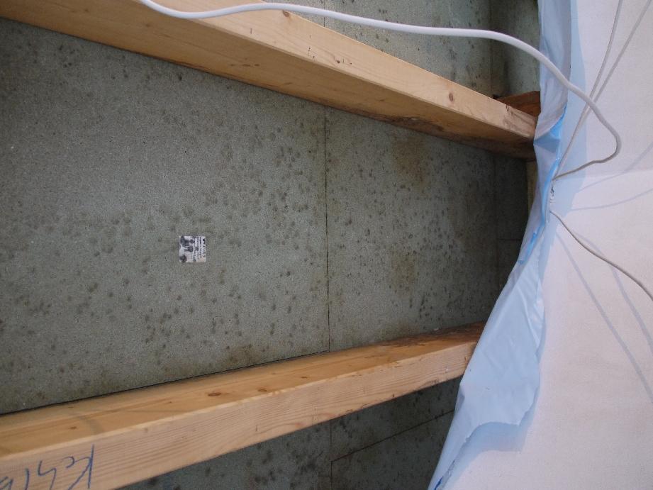 schimmel am dachstuhl ursachen und richtige sanierung. Black Bedroom Furniture Sets. Home Design Ideas